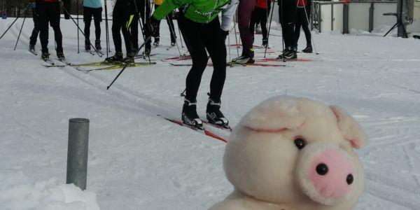 Langlauf-Loipen in der Villacher Alpen Arena im top Zustand!